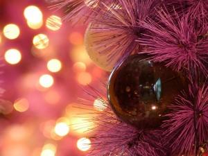 Снять квартиру в Минске на Новый год, Снять квартиру на сутки на НГ